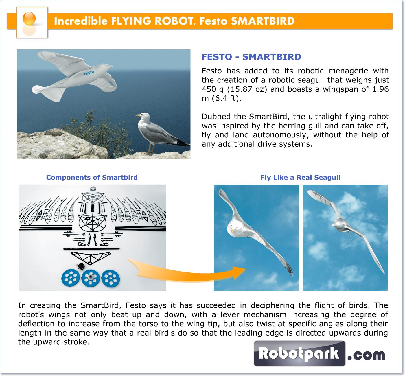Incredible FLYING ROBOT, Festo SMARTBIRD 31003 - Robotpark