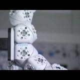 Festo - Molecubes