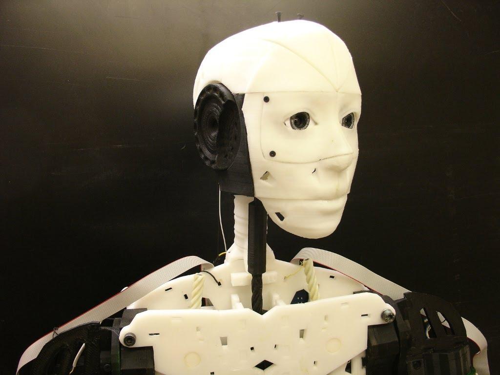 Humanoid Project INMOOV - Robotpark ACADEMY