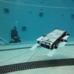 Swimming Robots