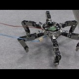 Asterisk - Omni-directional Insect Robot Picks Up Prey #DigInfo