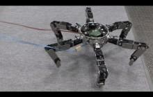 Asterisk - Omni-directional Insect Robot Picks Up Prey #DigInfo
