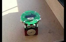 Robot with a rat brain