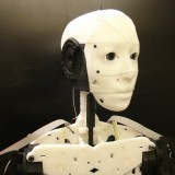 3D Printed Robot InMoov Open Source