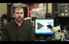 Bugs and Bots - Alper Bozkurt iBionics Engineering