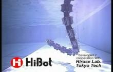 HiBot Amphibious snake robot
