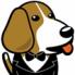 BeagleBoard (3)