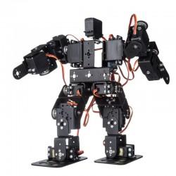 13 Axis Humanoid Robot