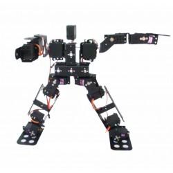 15 Axis Humanoid Robot