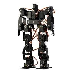 17 Axis Humanoid Robot