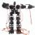 19 Axis Humanoid Robot