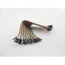300mm M/M 40 Pin Jumper Wire