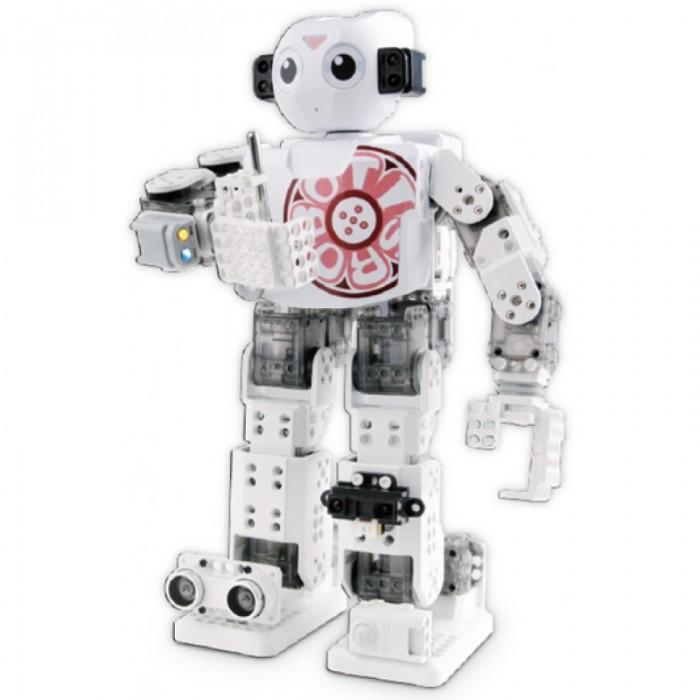 Binary options robot australia